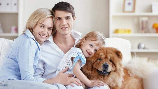 Wills & Trusts dog-young-family Direct Wills Burgess Hill